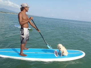 Neptune likes to Stand Up Paddleboard